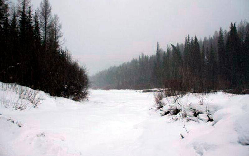 The river Salgana walked along - Credit: Yury Darbaa/ The Siberian Times