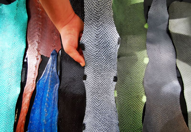 French company turns throwaway salmon skin into leather