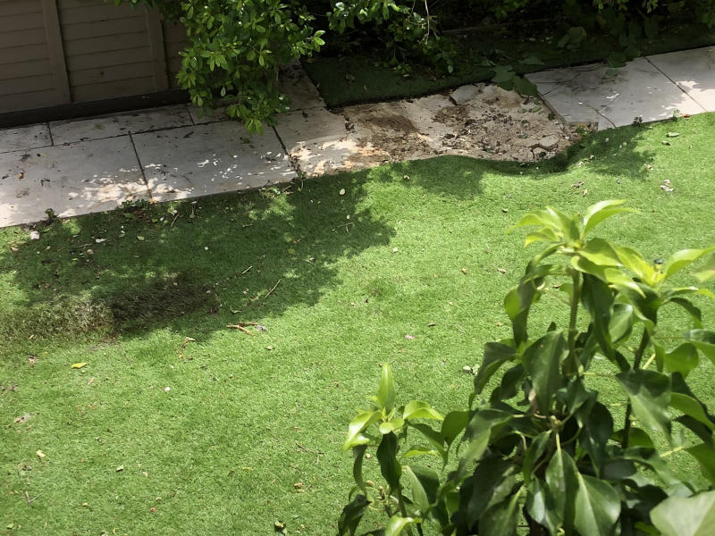The force of the body landing caused a small crater in the back garden (Picture: SWNS)