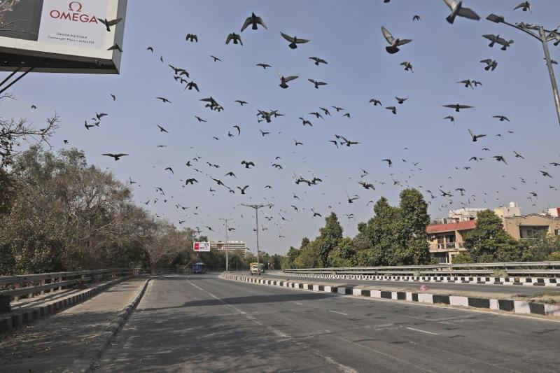 A Wind of Change: The Coronavirus Curse Has Been a Boon for India's Air Quality