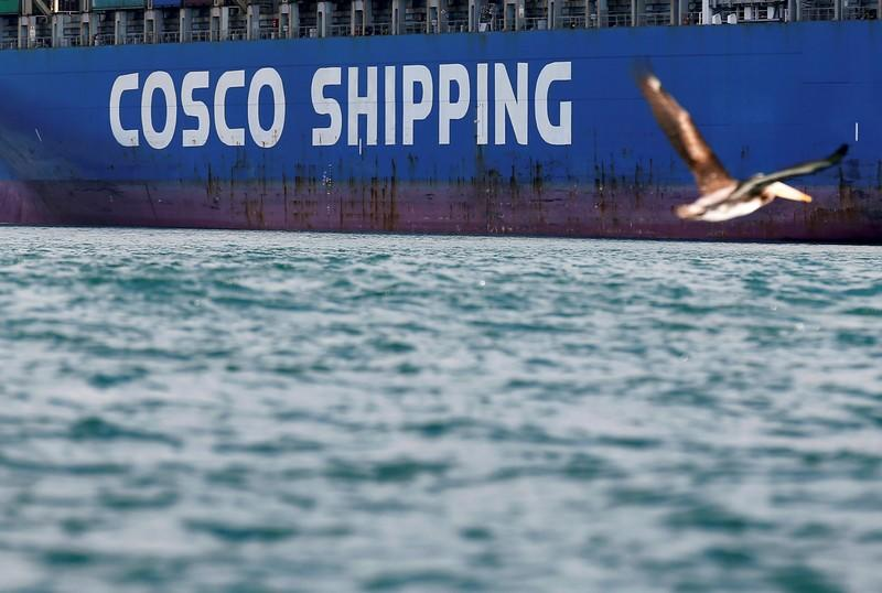 FILE PHOTO: A bird flies by a China Ocean Shipping Company (COSCO) container ship at the San Antonio port in Chile