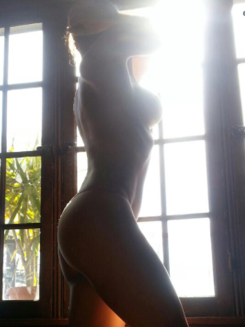 <p>Adrianne Curry's silhouette is making us blush</p>