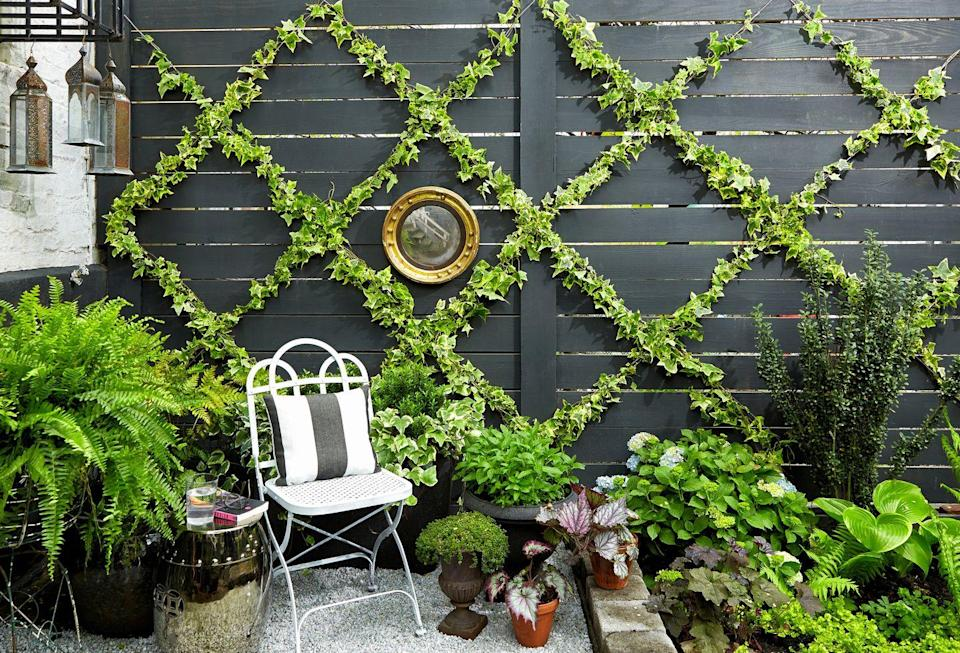 <p>Obsessed with lattice? For an unexpected touch to your garden, let the pattern set the foundation for a green wall.</p>