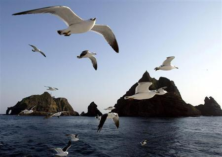 Seagulls soar in the sky near Dokdo islets.