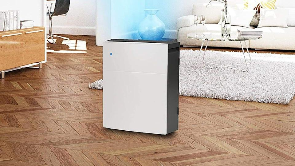 This Blueair Classic is one of our favorite air purifiers for its unobtrusive aesthetics and impressive skill at filtering out food smells.