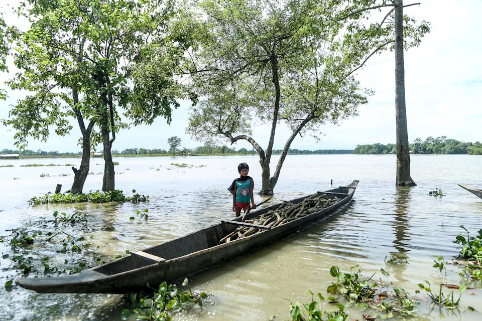 A girl of Laibil villageo of Sibsagar district collects tree branches floats due to flood in Sibsagar district of Assam, India, on July 22, 2020. The whole whole villages affected by the flood on 22nd July 2020. (Photo by Dimpy Gogoi/NurPhoto via Getty Images)