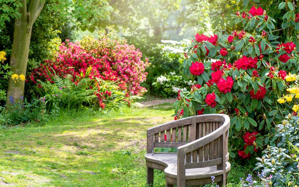 A bench in a garden - Moment RF/Jacky Parker Photography