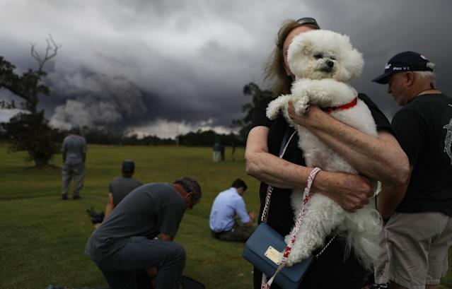 <p>A woman hold her dog Tzippy at a golf course as an ash plume rises in the distance from the Kilauea volcano on Hawaii's Big Island on May 15, 2018 in Hawaii Volcanoes National Park, Hawaii. (Photo: Mario Tama/Getty Images) </p>
