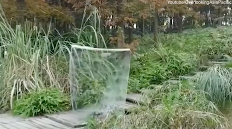 The man magically disappears once behind the sheet. Photo: Youtube