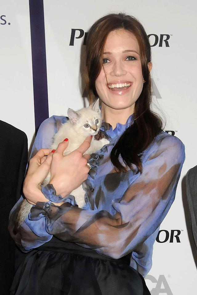 """Mandy Moore got cuddly with a super-cute furry friend on Wednesday at ASPCA headquarters in New York, where she was helping to launch a pet healthcare awareness campaign. Not to worry, dog lovers, she split up her time and posed with a pup, too! Johns PKI/<a href=""""http://www.splashnewsonline.com"""" target=""""new"""">Splash News</a> - April 20, 2011"""