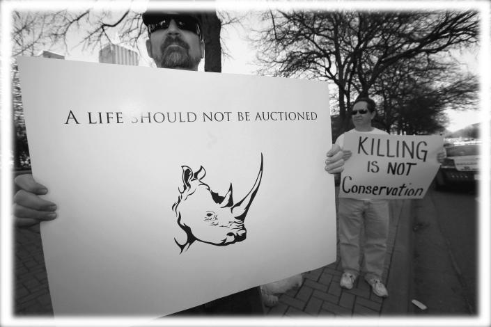 Protesters outside the Dallas Convention Center where the Dallas Safari Club is holding its weekend show and auction, where a permit to shoot an endangered black rhinoceros in Africa was up for bid, in Dallas in 2014. (Photo: Tony Gutierrez/AP; digitally enhanced by Yahoo News)