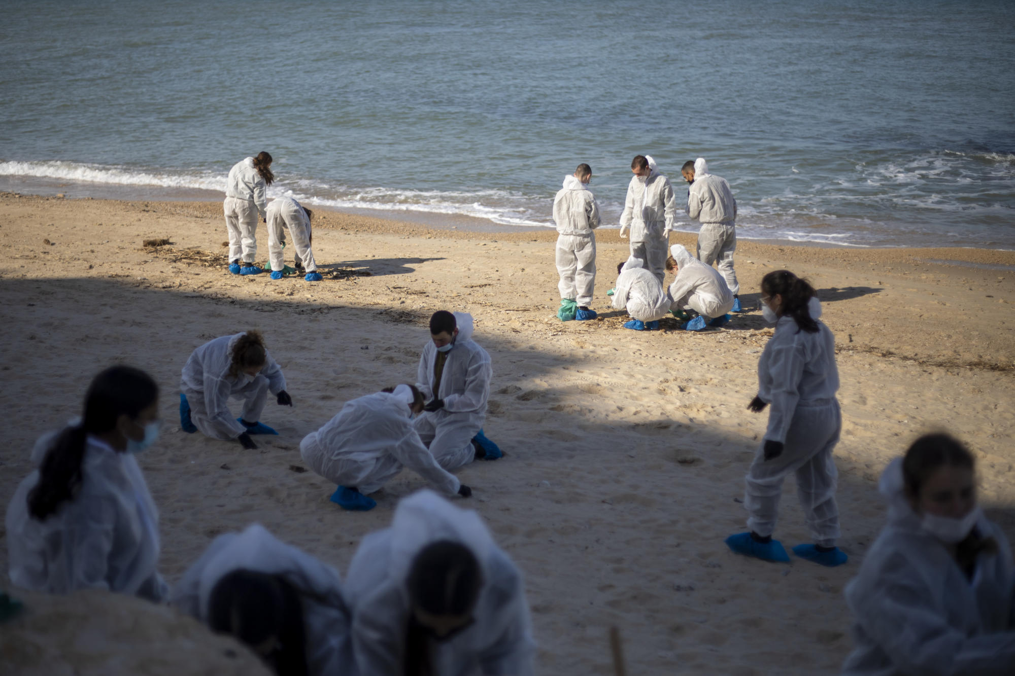 Volunteers mobilize to clean Israel's tar-coated beaches