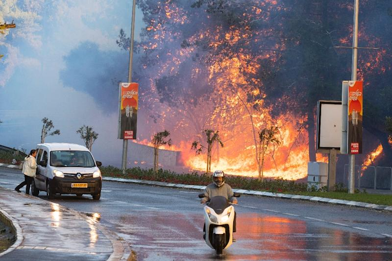Israeli authorities evacuated 60,000 people from Haifa because of a spate of wildfires (AFP Photo/Jack Guez)