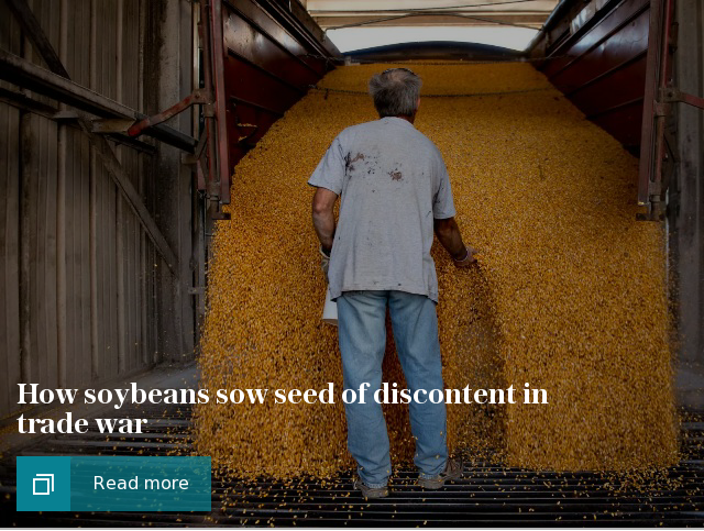 How soybeans sow discontent in trade war