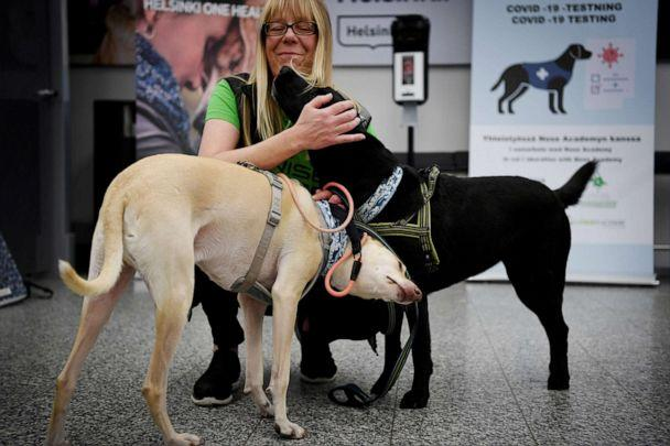 PHOTO: Trainer Susanna Paavilainen is seen with Kossi (L) and Miina, sniffer dogs being trained to detect COVID-19 from the arriving passengers' samples, at Helsinki Airport in Vantaa, Finland, Sept. 22, 2020. (Lehtikuva via Reuters)