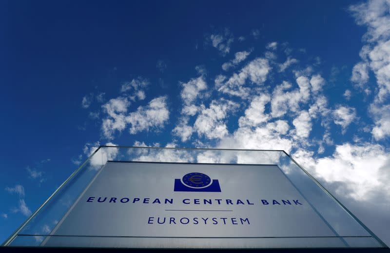 ECB may need more flexibility around inflation target - Müller
