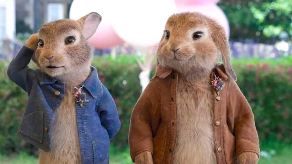 <p>When Peter Rabbit (voiced by James Corden) ventures out of the garden, he encounters a world greater than he imagined. But the adventure forces Peter to look inward and discover what he truly wants. The family film, which also includes the voice talents of Margot Robbie and Sia, is slated to hop into theaters January 2021.</p>