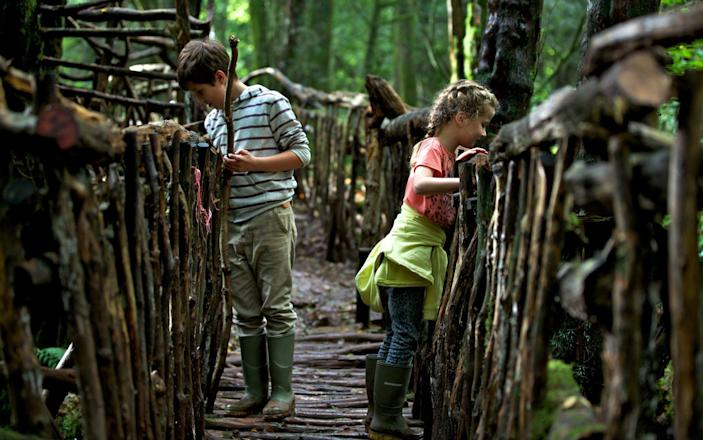 One of many magical bridges at Puzzlewood - Puzzlewood