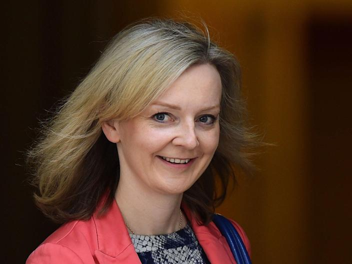 International trade secretary Liz Truss ordered to resumption of arms sales (Getty Images)