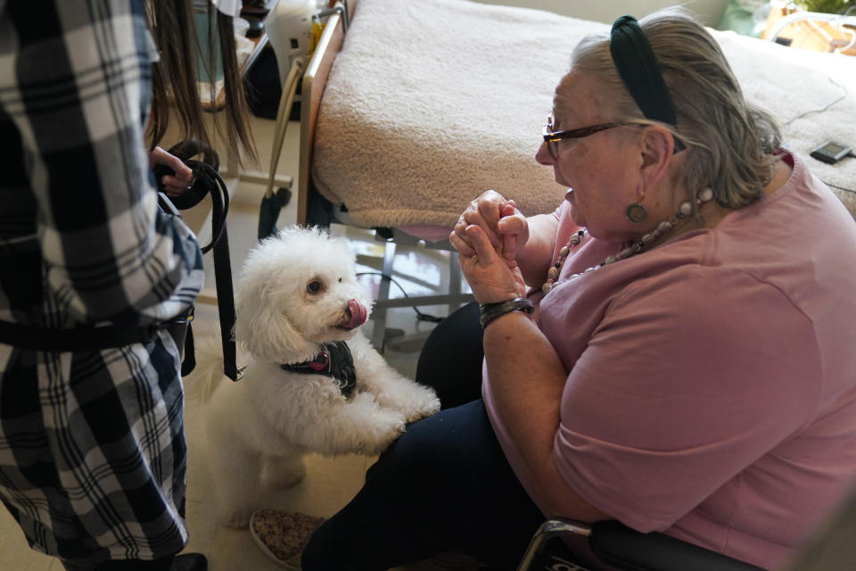 Eileen Nagle, 79, talks with Zeus, a bichon frise, as he visits her room at The Hebrew Home at Riverdale in New York, Wednesday, Dec. 9, 2020. New dog recruits are helping to expand the nursing home's pet therapy program, giving residents and staff physical comfort while human visitors are still restricted because of the pandemic. (AP Photo/Seth Wenig)