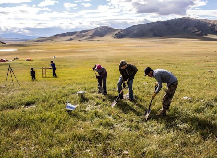 """<span class=""""caption"""">Archaeologists investigate an ancient habitation site in western Mongolia, seeking clues to the early history of domestic horses.</span> <span class=""""attribution""""><span class=""""source"""">William Taylor</span>, <a class=""""link rapid-noclick-resp"""" href=""""http://creativecommons.org/licenses/by-nd/4.0/"""" rel=""""nofollow noopener"""" target=""""_blank"""" data-ylk=""""slk:CC BY-ND"""">CC BY-ND</a></span>"""