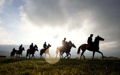 Riders will be matched to their horses in future to avoid injury - Credit: Andrew Matthews