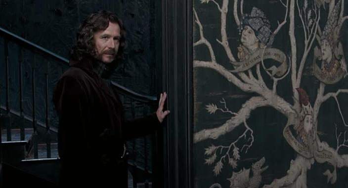 sirius black gary oldman harry potter