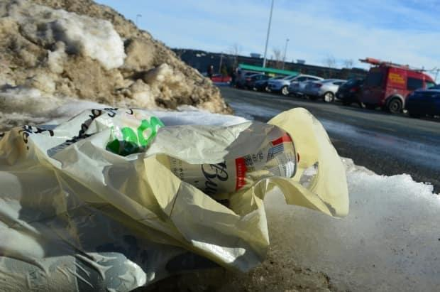 Regina city administration say the ban is needed not only because of the amount of bags going to the landfill, but also because of the number of bags littering the streets.  (Zach Goudie/CBC - image credit)