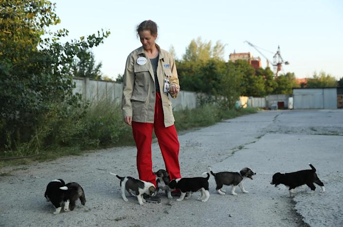 <p>Marie-Louise Chenery, a volunteer with the Dogs of Chernobyl initiative from San Diego, tends to stray puppies near the Chernobyl nuclear power plant as the abandoned construction site of reactors five and six stands behind on Aug. 17, 2017, near Chernobyl, Ukraine. (Photo: Sean Gallup/Getty Images) </p>