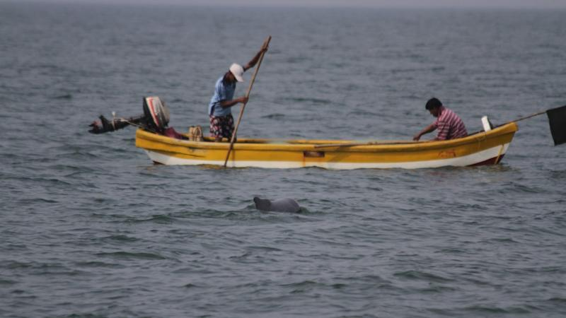 Fishermen hard at work and a dolphin can be seen keeping an eye on its food. image credit: Ketki Jog