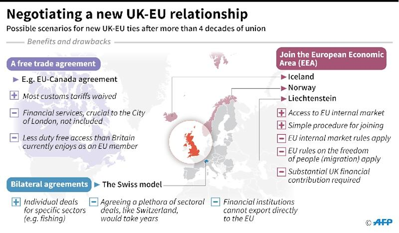 Britain and the EU: negotiating a new relationship (AFP Photo/)