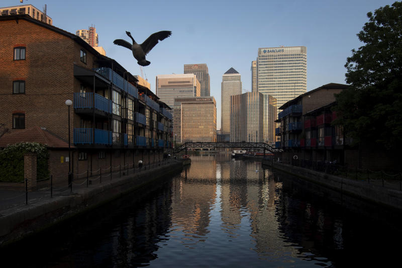 A Canada Goose takes flight from a water course backdropped by the buildings in Canary Wharf area of the City of London, early Thursday May 7, 2020. The highly contagious COVID-19 coronavirus has impacted on nations around the globe, many imposing self isolation and exercising social distancing when people move from their homes. (Victoria Jones / PA via AP)
