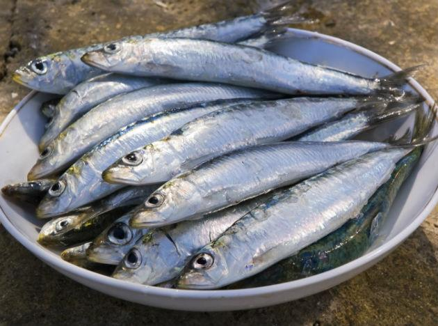 "<b>Sardines </b><br>These tiny fish are the unsung stars of the sea. They are high in protein and loaded with omega-3s, which also help the body maintain muscle. And they're low in mercury and high in calcium, making them a smart fish pick for pregnant women. If the flavor doesn't appeal to you, ""soak them in milk for an hour; it will remove any trace of fishiness,"" Iserloh says. <br><b>Eat more</b> ""Use sardines in recipes you like that call for anchovies, including Caesar salad and stuffing,"" Iserloh says. Or make a sardine melt: Toss whole sardines with chopped onions, fresh herbs and diced bell peppers. Put the mixture on top of a slice of pumpernickel or rye bread, cover with a slice of cheddar and broil."