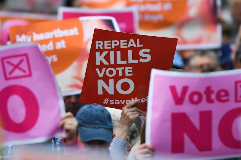 Demonstrators held up placards during an anti-abortion rally in Dublin (AFP Photo/Artur Widak)