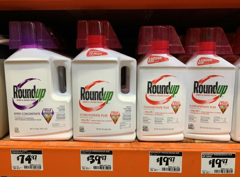 """""""Bayer is a massive, wealthy company, and it continues to make money specifically from Roundup sales,"""" US district judge Vince Chhabria said"""