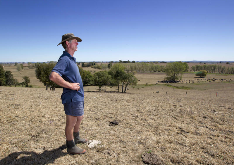 In this photo taken on March 11, 2013, farmer Peter Brown walks on the dry ground at his dairy farm near Ohinewai, New Zealand. A drought in New Zealand's North Island is costing farmers millions of dollars each day and is beginning to take a toll on the country's economy. (AP Photo/New Zealand Herald, Brett Phibbs) NEW ZEALAND OUT, AUSTRALIA OUT