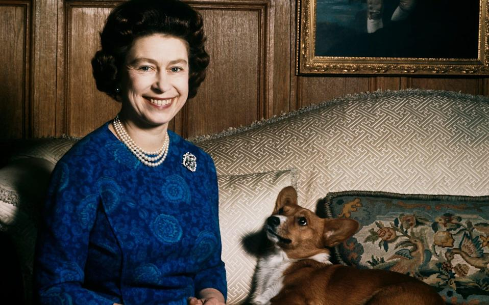 The Queen, pictured with one of her corgis at Sandringham in 1970 - Fox Photos/Hulton Archive/Getty Images