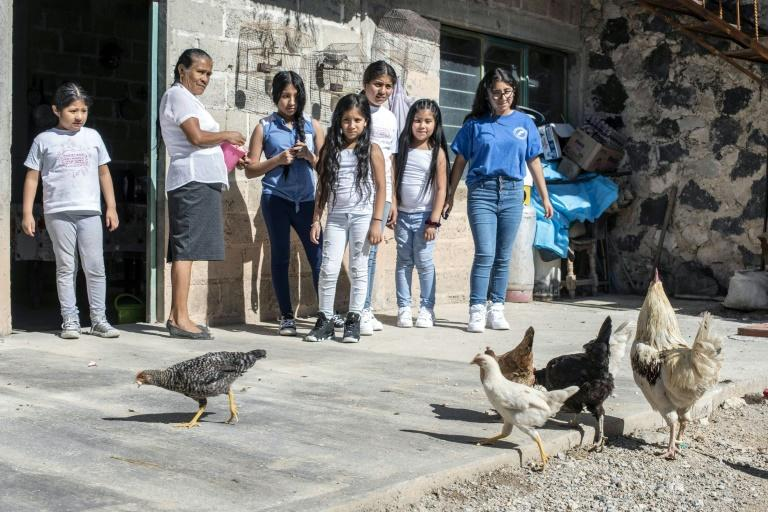 Mexican Atanacia Carvete teaches her US-born granddaughters to feed hens during a family reunion