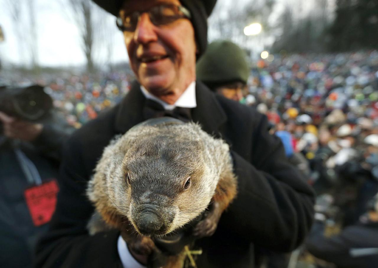 Groundhog Club co-handler Ron Ploucha holds the weather predicting groundhog, Punxsutawney Phil, after the club said Phil did not see his shadow and there will be an early spring, on Groundhog Day, Saturday, Feb. 2, 2013, in Punxsutawney, Pa. (AP Photo/Keith Srakocic)