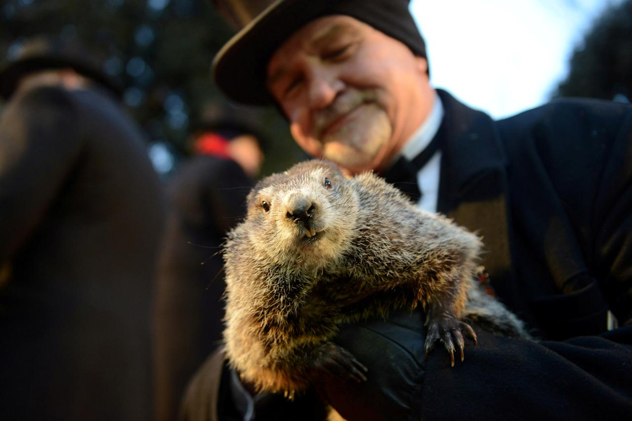 <p>Co-handler John Griffiths holds Punxsutawney Phil for the crowd gathered at Gobbler's Knob on the 132nd Groundhog Day in Punxsutawney, Pa., Feb. 2, 2018. (Photo: Alan Freed/Reuters) </p>