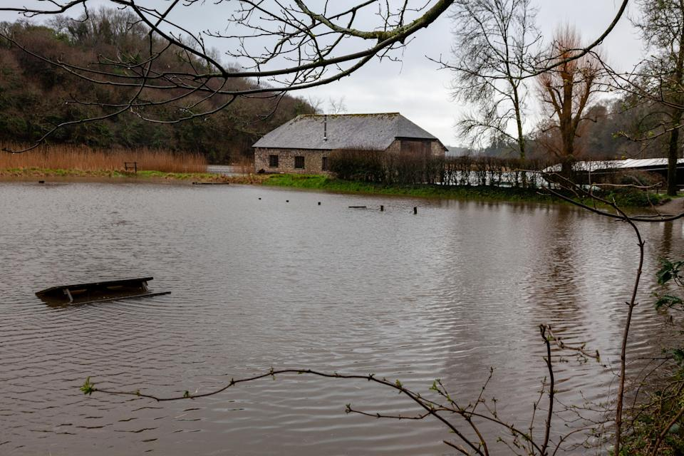 Flooding at Cotehele, Cornwall in February 2020