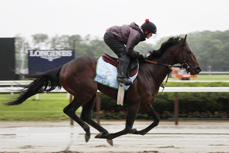 Exercise rider Jennifer Patterson takes Orb for a gallop on the track at Belmont Park, Friday, June 7, 2013 in Elmont, N.Y. Orb is entered in Saturday's Belmont Stakes horse race. (AP Photo/Mark Lennihan)