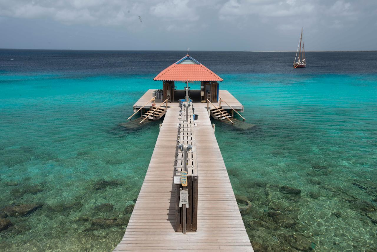 Which caribbean island is right for you - Dive e divi ...