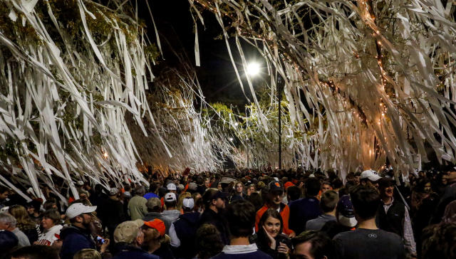 Auburn fans roll Toomer's corner after the Iron Bowl NCAA football game, Saturday, Nov. 25, 2017, in Auburn, Ala. (AP Photo/Butch Dill)