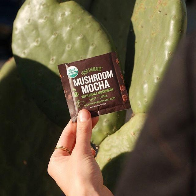 """<p>Four Sigmatic and their mushroom blend coffee has taken the health world by storm. It's a great gift to give to a coffee-obsessed foodie in your life.</p><p><a class=""""link rapid-noclick-resp"""" href=""""https://www.amazon.com/Four-Sigmatic-Cordyceps-mushrooms-performance/dp/B00UI10SDU?th=1&tag=syn-yahoo-20&ascsubtag=%5Bartid%7C10056.g.23900366%5Bsrc%7Cyahoo-us"""" rel=""""nofollow noopener"""" target=""""_blank"""" data-ylk=""""slk:SHOP"""">SHOP</a></p><p><a href=""""https://www.instagram.com/p/Bo1wGqHFwe5/?hl=en&taken-by=foursigmatic"""" rel=""""nofollow noopener"""" target=""""_blank"""" data-ylk=""""slk:See the original post on Instagram"""" class=""""link rapid-noclick-resp"""">See the original post on Instagram</a></p>"""