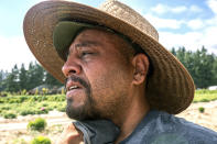 A farmworker, who declined to give his name, wipes sweat from his neck while working, Thursday, July 1, 2021, in St. Paul, Ore., as a heat wave bakes the Pacific Northwest in record-high temperatures. (AP Photo/Nathan Howard)