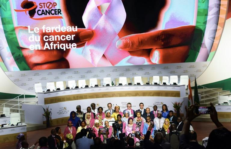 First ladies of the countries members of the African Union pose for a family picture in front of a poster for their new cancer initiative (AFP Photo/ISSOUF SANOGO)