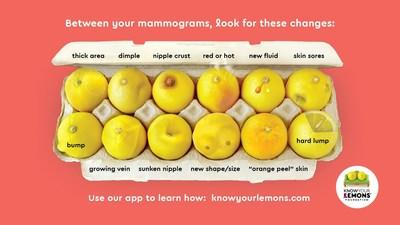 The 12 symptoms of breast cancer are explained on the webby award nominated Know Your Lemons® app. It is a gamechanger for early detection. It's expertly designed to manage breast health in a stress-free way that has saved many lives.
