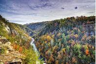 """<p><strong>Where to go:</strong> Tallulah Gorge in North Georgia is two miles long and nearly 1,000 feet deep. Take in the yellow oaks and red maples from trails overlooking the rim, rapids, and waterfalls. </p><p><strong>When to go: </strong>Mid-November</p><p><a class=""""link rapid-noclick-resp"""" href=""""https://go.redirectingat.com?id=74968X1596630&url=https%3A%2F%2Fwww.tripadvisor.com%2FHotels-g28931-Georgia-Hotels.html&sref=https%3A%2F%2Fwww.redbookmag.com%2Flife%2Fg34045856%2Ffall-colors%2F"""" rel=""""nofollow noopener"""" target=""""_blank"""" data-ylk=""""slk:FIND A HOTEL"""">FIND A HOTEL</a></p>"""