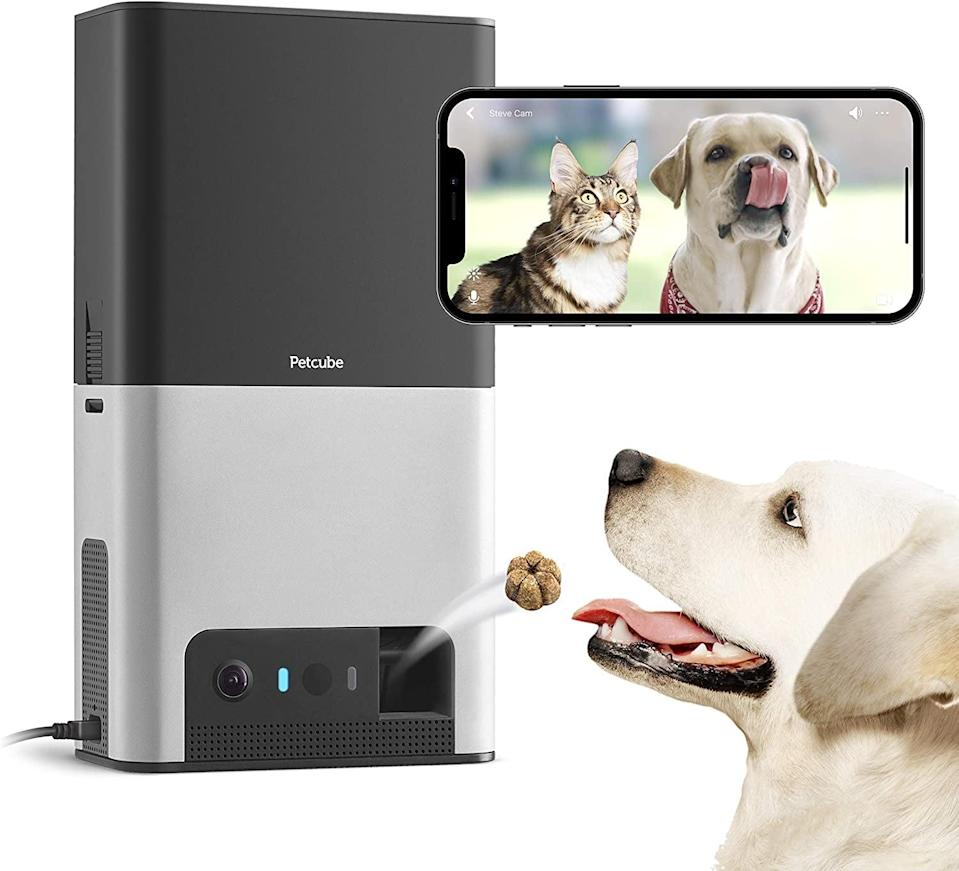 <p>The <span>Petcube Bites 2</span> ($199) is a wifi enabled pet camera with a treat dispenser. It is Alexa compatible, has 160 degree full-room view, 2-way audio, and night vision.</p>